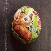 Hase in Tulpen Bild