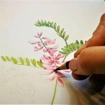 Online-Live-Malen mit Farbstiften Bild