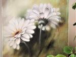weiße Gerberas