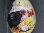 Huhn und Huhn mit Ei