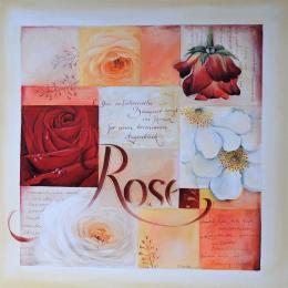 Rose Bild